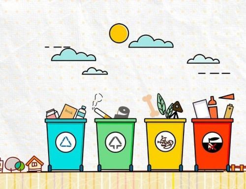今天,你被垃圾分类了吗:)