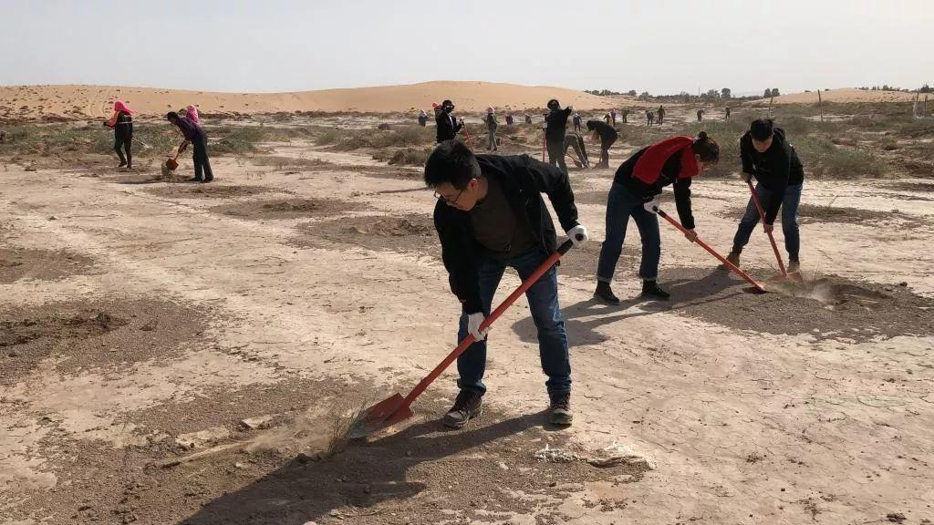 纪录片 | 小金团队暴走沙漠,为你种下一片绿色